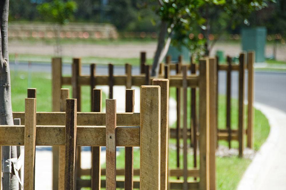 Close up of street tree timber protection cages